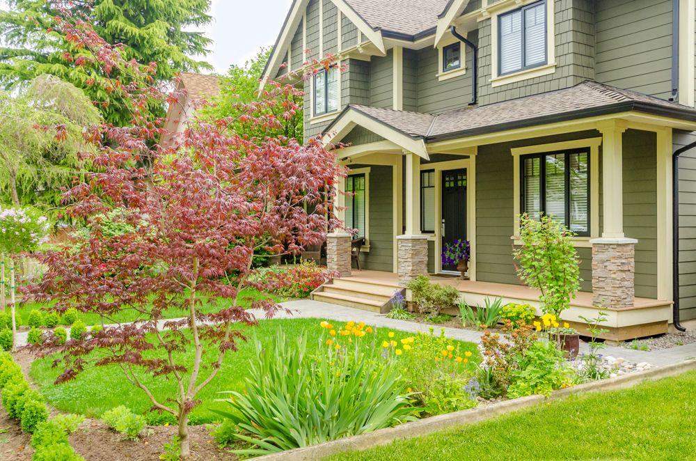 curb appeal landscaping charlotte nc photos tips diy ideas